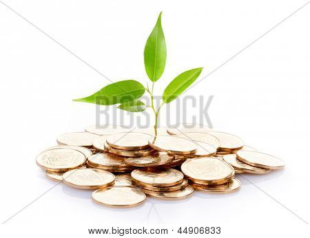 Young sprout from a pile of coins. Concept for investments. poster