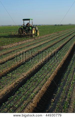 Spraying a Farm Field
