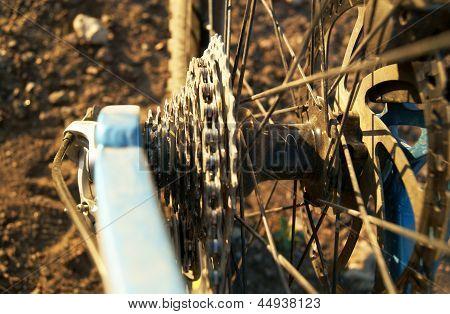 Fahrrad-Gang