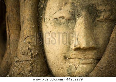Close-up head of Buddha in Wat Mahathat, Ayutthaya, Thailand.