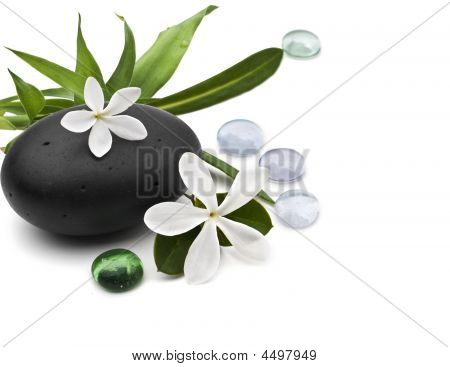 Spa Still Life With Frangipani And Bamboo Leafs On White Background