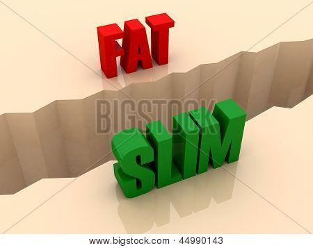 Two words FAT and SLIM split on sides separation crack.