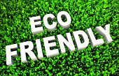 Eco Friendly Concept on Green Grass and Text poster
