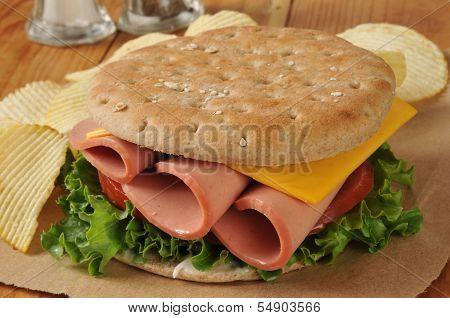 Baloney Sandwich On Thin Round Sandwich Bread