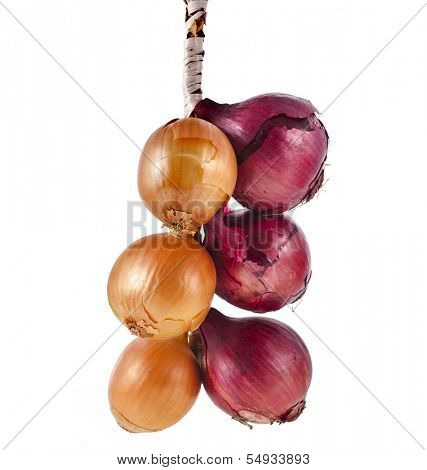 hanging bunch bundle of onion isolated on white background