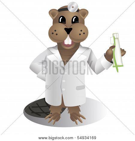 Beaver dantist doctor vector illustration
