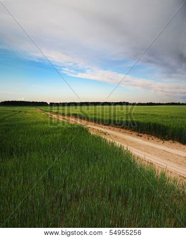 Country road across agriculture field - 1.