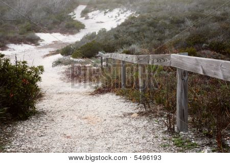 Path To The Dunes