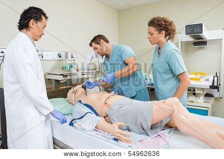 Male nurse adjusting endotracheal tube on dummy patient while colleague and doctor looking at it in hospital