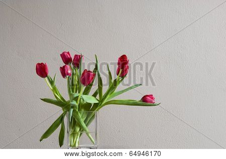 Red Tulip In Vase