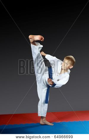 On the red-blue mat small athlete beat kick yoko-geri