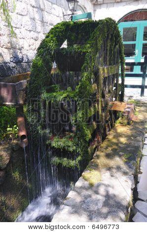 Green water wheel