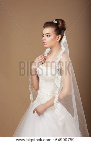 Espousal. Profile Of Elegant Stylish Bride With Veil