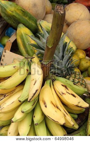 Bananas on a Stalk at the Market