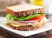 deli meat sandwich with turkey, tomato, onion, and lettuce poster