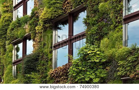 Paris - Green Wall On Part Of The Exterior Of The Quai Branly Museum