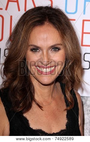 LOS ANGELES - OCT 28:  Amy Brenneman at the 25th Courage In Journalism Awards at the Beverly Hilton Hotel on October 28, 2014 in Beverly Hills, CA