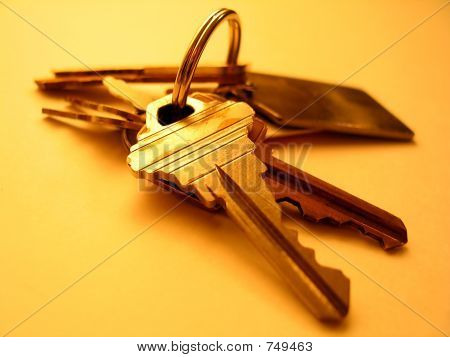 ring of keys on a yellow background poster