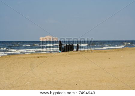 Arabian women on a beach