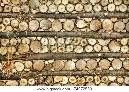 Natural Wood Log Background