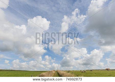 Path Texel Clouds