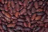 delicious food background of brown beans closeup poster