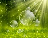 Soap bubbles on a nature background vector poster