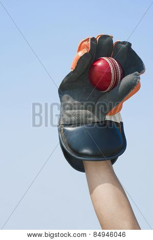 Wicket keeper catching a ball