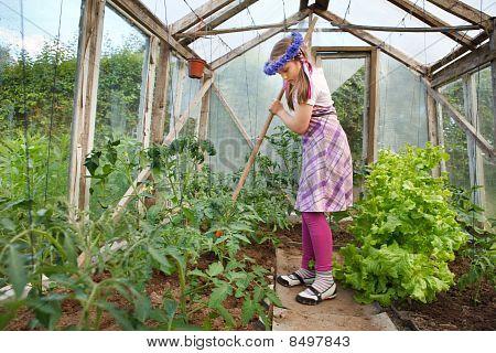 Little Girl Gardening In Greenhouse