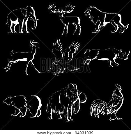 Zoo animals vector collection