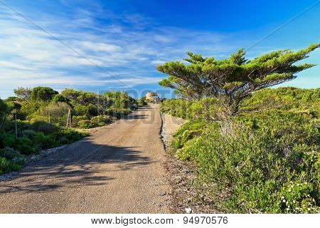 Sardinia - Small Road In San Pietro Isle