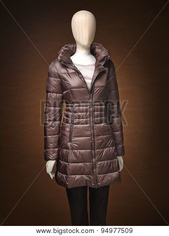Womens Jacket Isolated On A Brown Background