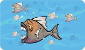 Vector illustration of some piranhas attacking under water poster