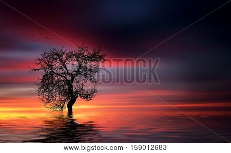 Tree at lake, landscape, tree, lake, reflektion