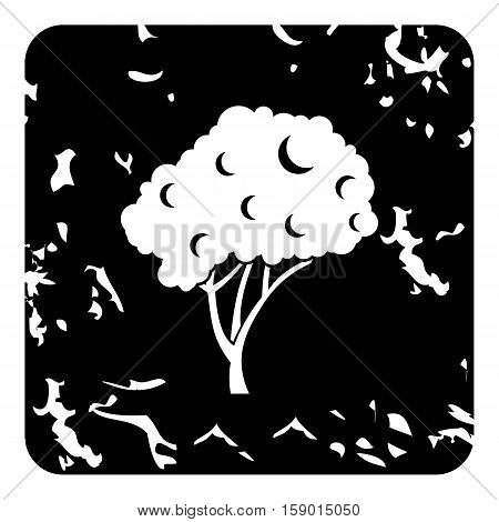 Fruit tree icon. Grunge illustration of fruit tree vector icon for web