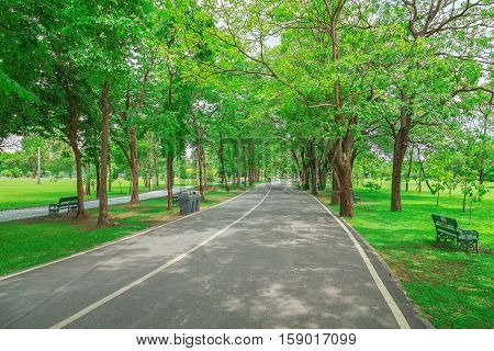 Road to the exercise at Chatuchak Park in Bangkok.