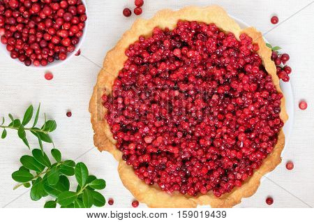 Appetizing cowberry pie and fresh berries cowberry on white background top view