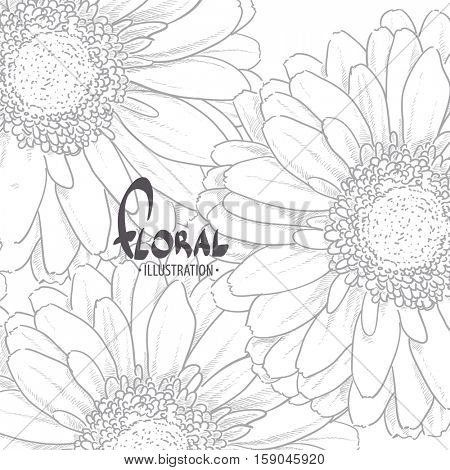 Gerbera drawn by pencil with a place for your inscription