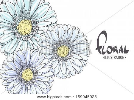 Bright Blue gerbera on a white background with a place for your congratulations