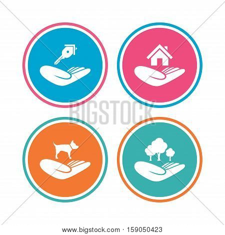 Helping hands icons. Shelter for dogs symbol. Home house or real estate and key signs. Save nature forest. Colored circle buttons. Vector