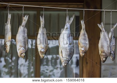 Dried river fish hanging on the rope. Harvesting fish