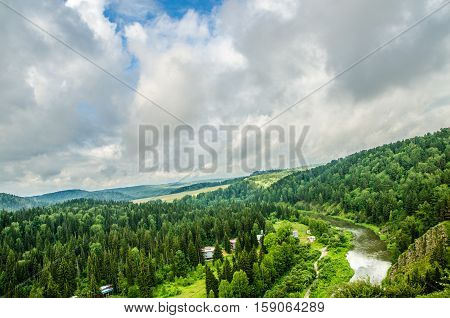 Thick Fog Covered With Thick Coniferous Forest. Forest With A Bird's Eye View . Coniferous Trees, Th