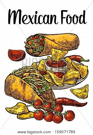 Poster Mexican traditional food with lettering. Burrito tacos chili tomato nachos. Vector color vintage engraved illustration for menu poster web. Isolated on white background.