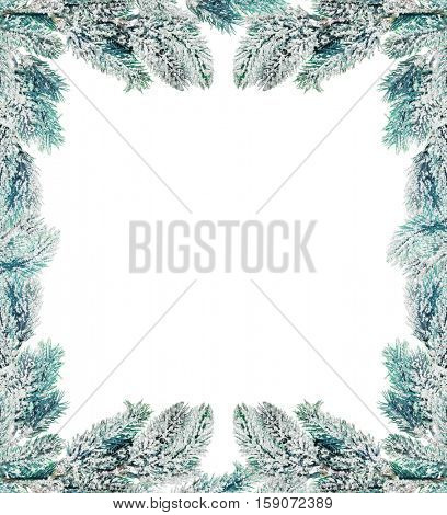 corner from pine tree branch in snow isolated on white background