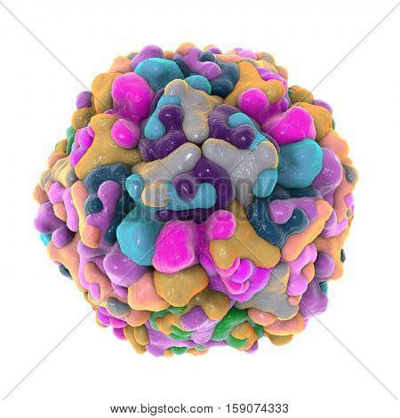 Enterovirus 71 which causes hand-foot-and-mouth disease HFMD isolated on white background, 3D illustration. A model is built using data of viral structure from Protein Data Bank PDB 4YVS