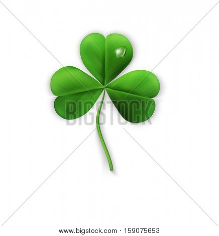 green shamrock on a white background (element for design) for the holiday sv.Patrika