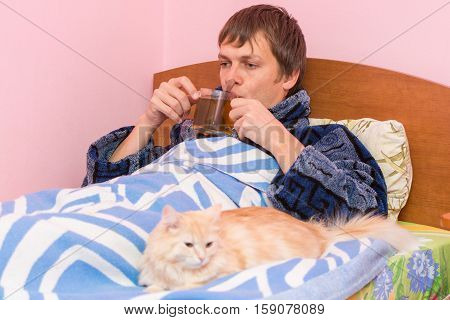A Sick Man Lying In Bed And Drinking Tea, Lies Next To The Cat