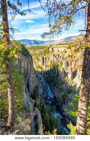 Yellowstone River Vertical View