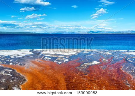 Bacteria Mat And Yellowstone Lake