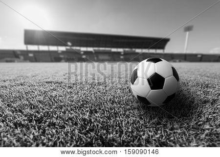 Soccer Green grass in soccer stadium .